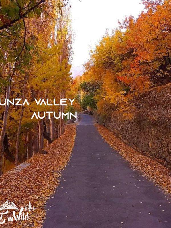 Hunza Valley Autumn